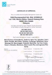 DXN MS ISO 9001 2000 tanúsítvány