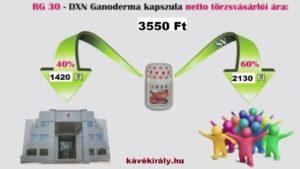 A DXN marketingterve és kifizetési rendszere