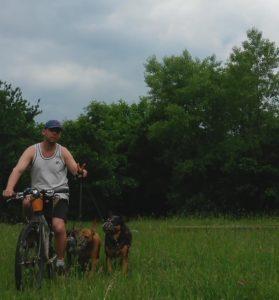Kerékpározás három kutyával