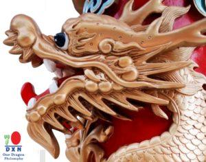 DXN One Dragon Egy Sárkány koncepció