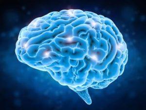 DXN One Mind - Egy Tudat koncepció