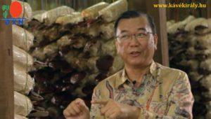 Dato' Dr. Lim Siow Jin mesél a DXN-ről