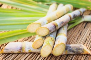 Szép friss feldarabolt cukornád zöld leveleken