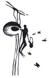 Pauka barlang, Spanyolország: mézgyűjtés barlangrajzon megörökítve