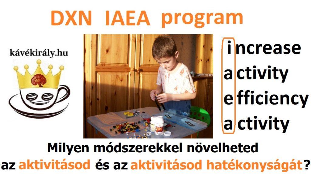 Milyen módszerekkel növelheted a DXN üzletbeli aktivitásod és az aktivitásod hatékonyságát? A képen az unokaöcsém éppen LEGO-zik