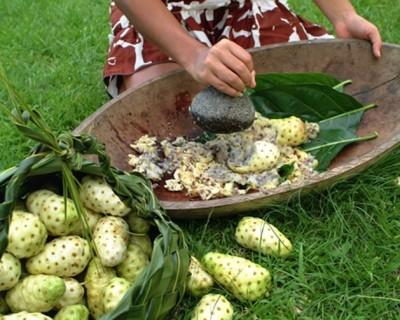 Noni gyümölcslé készítése egy Tahitin lévő faluban