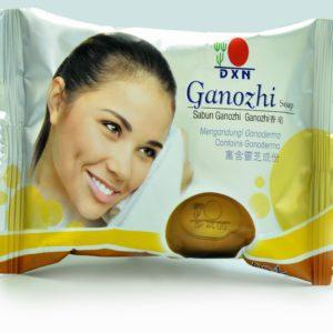 A ganodermás szappan egy többcélú DXN termék, amely borotválkozásra és hajmosásra is használható