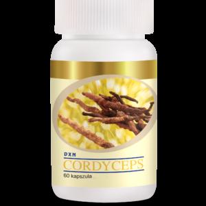 DXN Cordyceps kapszula: természetes vágyfokozó mellékhatások nélkül