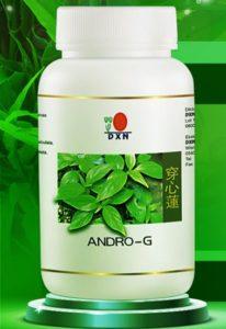 DXN Andro G Andrographis paniculata gyógynövény kivonat: jóbarát influenzajárvány idején