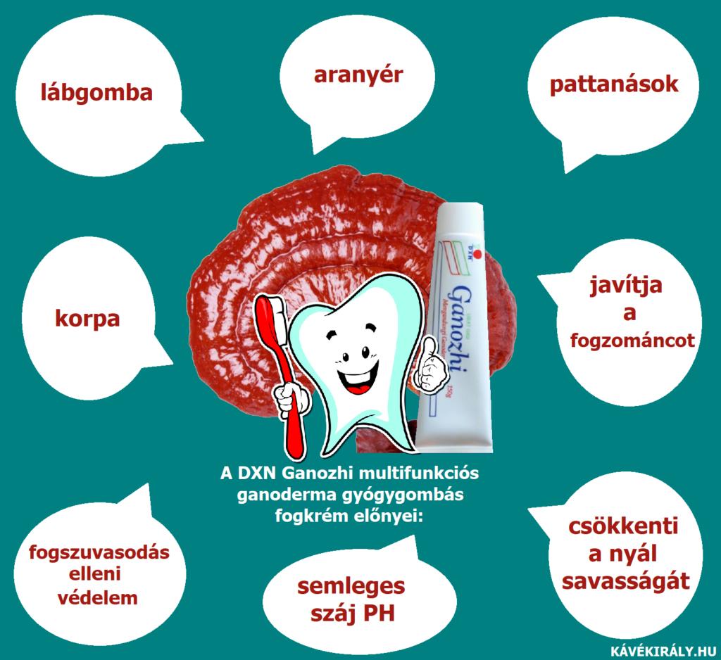 A Ganoderma gombás fogkrém használható belsőleg és a bőrön is.