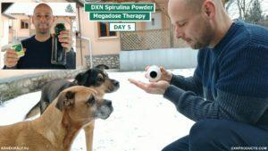 A kutyák imádják a DXN Spirulina alga tablettákat