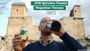 Castle of Diósgyőr and DXN Spirulina smoothie